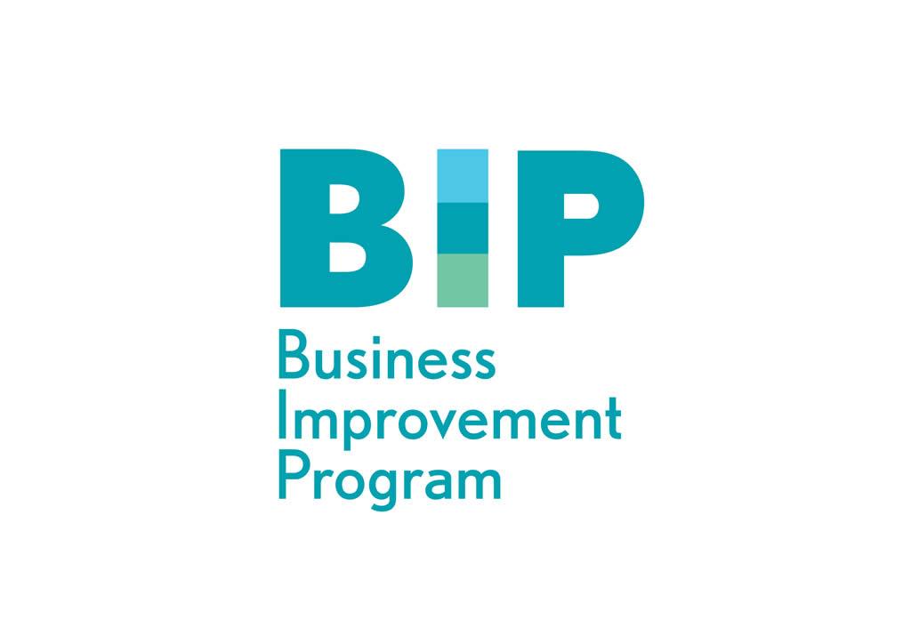 Business Improvement Program BIP